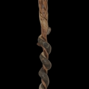 Rattlesnake Walking Stick