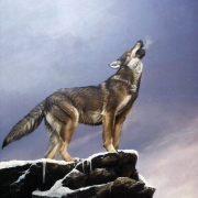 Gathering Call -Timber Wolf