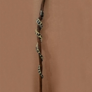 Desert Kingsnake Hiking Staff